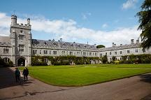 Campamentos en Irlanda